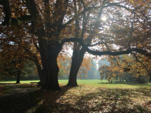 Kromeriz castle garden