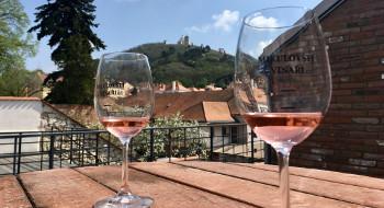 Mikulov Wine Trip