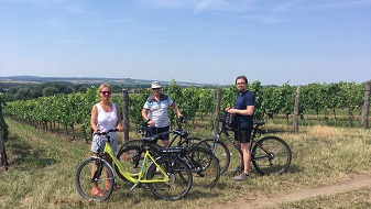 Wine Tasting Bike Trip in Mikulov region with picnic lunch